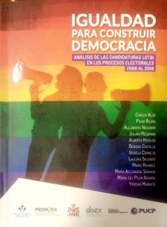 Igualdad para construir Democracia Análisis de las Candidaturas LGTBI en los procesos electorales